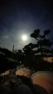 1.11夕陽.jpg