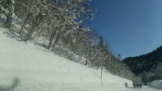 冬の太陽.jpg