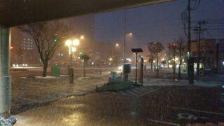 初雪①.jpg