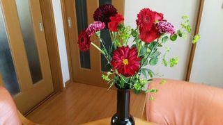 花よこ.jpg